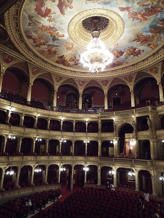 A ópera por dentro